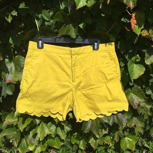 Scallop Edge Shorts- this season style